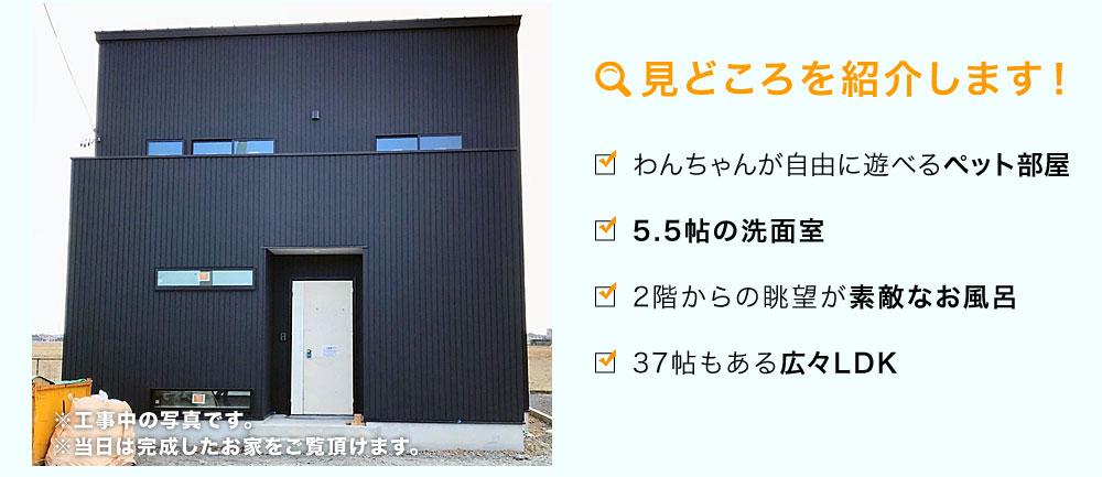 2018/2/24(土)、25(日)磐田市会場の見どころを紹介します!